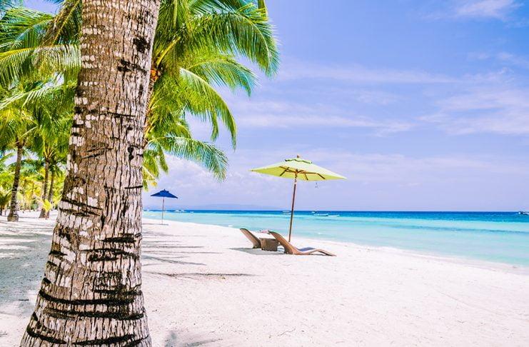 Bohol Adası Filipinler