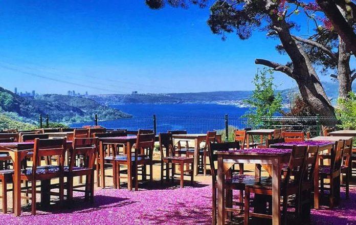 Çam Vadisi Cafe, Beykoz