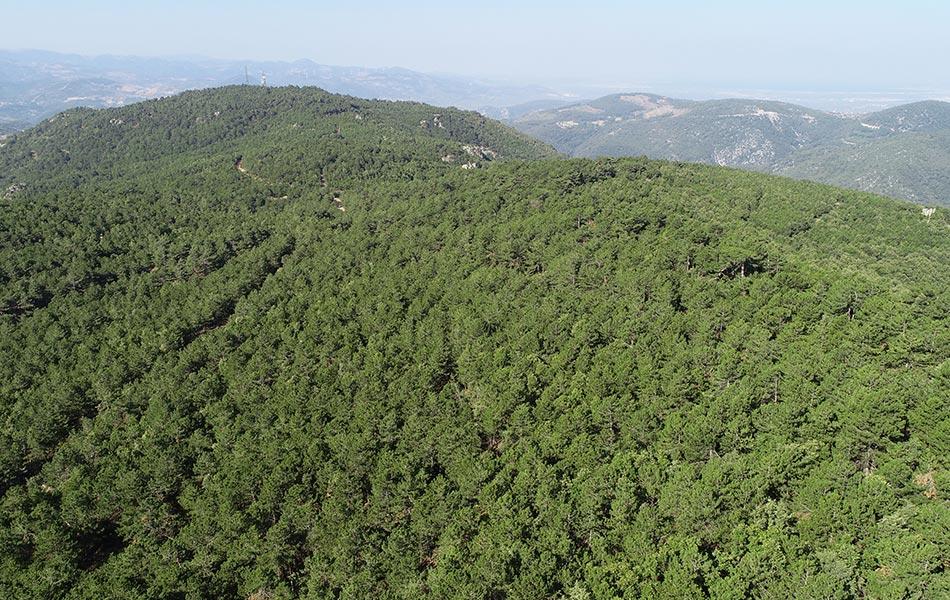 Çanakkale Kaz Dağları