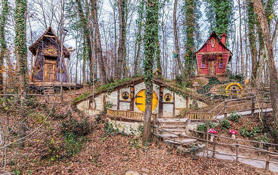Kocaeli Ormanya Kamp Alanı