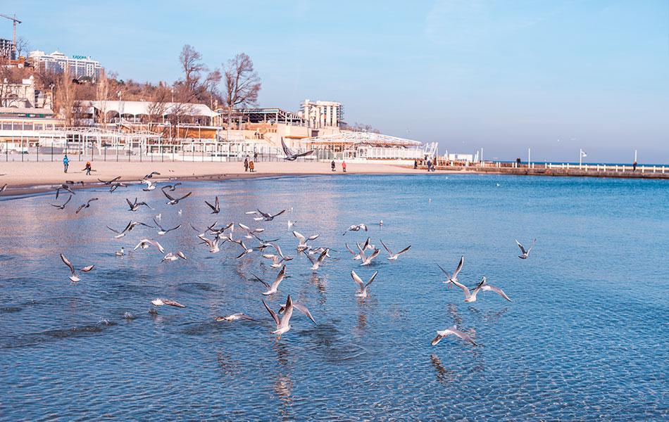 Odessa Gezi Rehberi