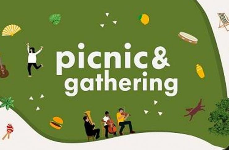 Picnic Gathering Piknik Serileri!