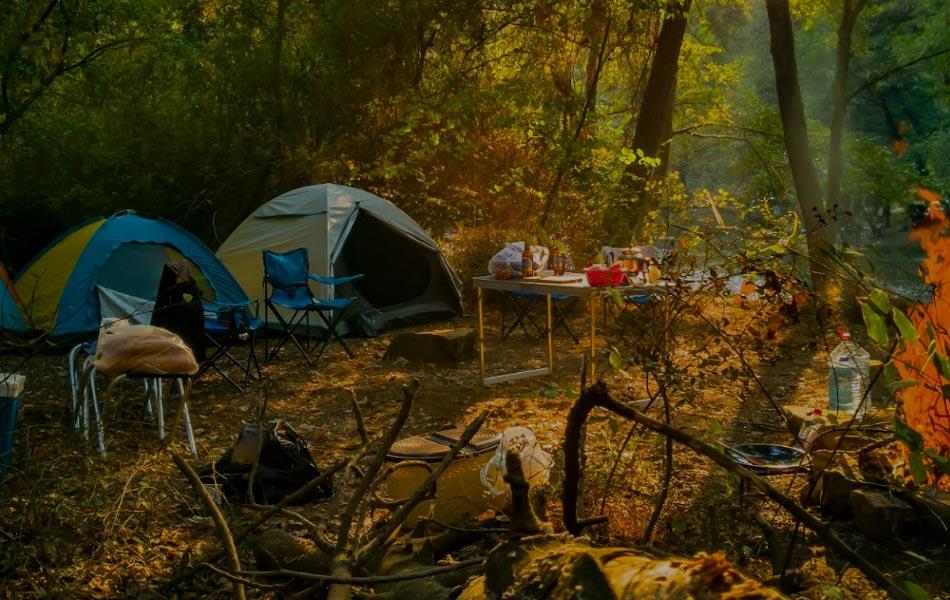 Yeşil Vadi Kamp Alanı